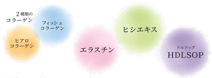 AnelaKireiアネラキレイすし乳酸菌サプリ